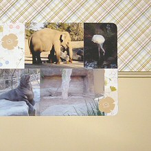 Scrapbooking with Chatterbox