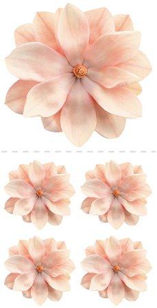 Magnolias Stickers