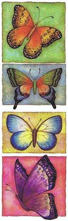 Glitter Big Butterfly Rub-Ons