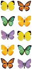 Little Butterflies Stickers